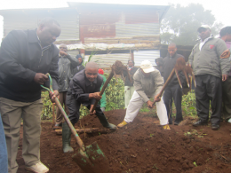 Double digging being demonstrated to farmers