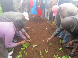 Farmers being shown efficient planting patterns