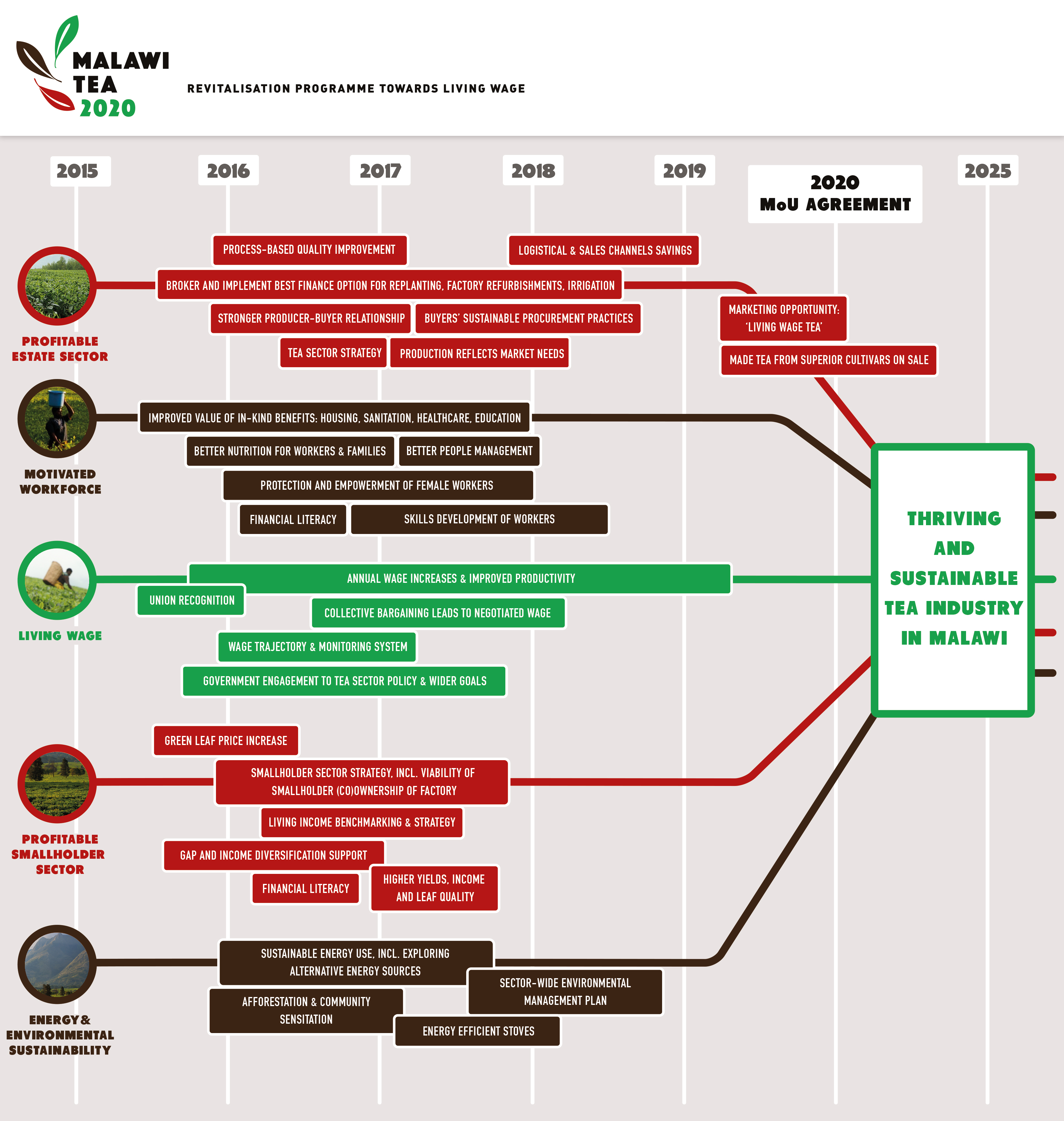 malawi-tea-2020-roadmap