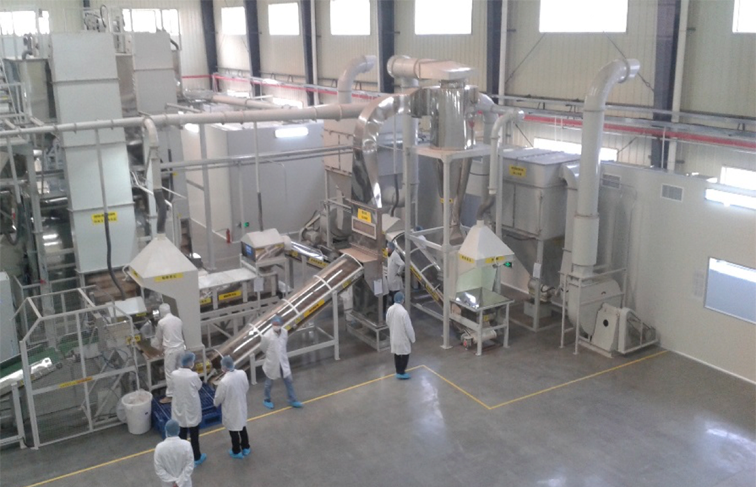 Tea blending clenaing and processing facility