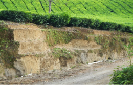Terracing is used to reduce soil erosion